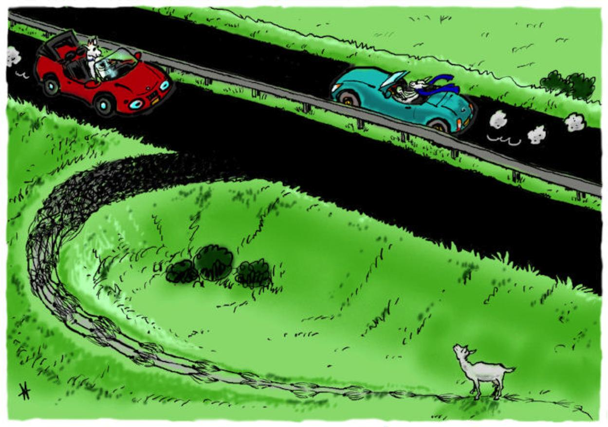 Geitenpad. Iets nieuws leren is als het maken van een geitenoms weg van de snelweg die je altijd neemt. Je brein bevat miljarden hersencellen waarmee je nieuwe paden kunt maken.